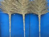 东莞金丝扫帚供应商 芒花扫帚 环保绿化