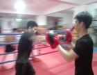 深圳专业班业余班拳击训练 强身搏击俱乐部