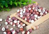 广东浦特公司供应报价合理的芡实鸡头米 批发芡实