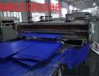 专业重庆中空板厂家生产重庆中空板加工销售