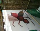 西双版纳外墙彩色绘画涂鸦墙面画画工程彩色涂料工程