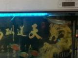 1000个鱼缸,连鱼带缸