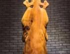 崖柏根雕摆件天然木雕财神财源滚滚木质工艺品小型雕刻收藏礼品艺