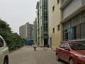观澜清湖转让楼上1300平米厂房,无需转让费