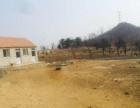 羊亭南江疃村东山