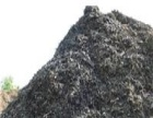 聊城高价回收废旧金属 废钢 废铁