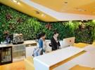 石家庄绿墙仿真植物墙公司绿植墙生态植物墙生态绿墙绿色背景墙