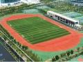 足球场草皮沈阳批发 笼式足球场草坪设计铺装 沈阳足球场价格