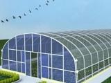北京蔬菜大棚廠家 北京蔬菜大棚建造廠家 蔬菜大棚建造
