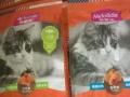佩玛思特幼猫粮,厂价!批发猫粮狗粮宠物用品…
