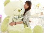 毛绒玩具抱抱熊抱枕双色熊大号优质压床娃娃精品
