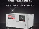 欧洲狮25KW静音汽油发电机