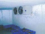 湛江海鲜冷库安装,畅销的海鲜冷库设备价格怎么样