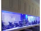 常熟鱼缸定做鱼缸厂家大型观赏鱼缸设计公司定做亚克力水族箱