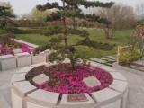 鄭州樹葬墓地