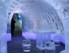冰雕展形态多样出租全国接单