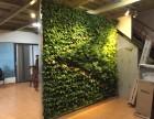 罗湖黄贝岭仿真植物墙 花墙 美观绿植墙 免费设计