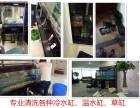 南京水族箱鱼缸专业维护 鱼缸消毒清洗 观赏鱼定期维护 8折起