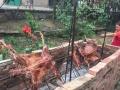 张家湾自然生态园自助烧烤 垂钓 观赏桃花草莓采摘