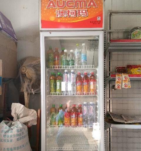 澳柯玛立式冰柜,非诚勿扰