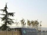 千河工业园2万平方米空余场地出租、寻求合作伙