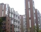 城市森林 精装一房 拎包入住 贺龙体育馆附近 一号线 租房
