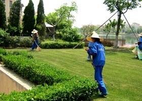 企事业单位日常保洁开荒养护项目为什么要托管