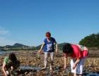 广鹿岛渔家乐,休闲渔家生活+感受海边浪漫风情