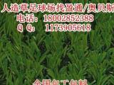 泰顺人造草足球场施工-人造草皮价格