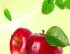 Q果网网上水果超市 Q果网网上水果超市诚邀加盟
