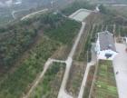 唐街:当阳城郊200亩农庄880万售