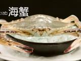 郑州宣传片拍摄专注于郑州微电影等领域
