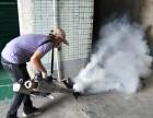 东莞白蚁防治 杀虫灭鼠 多镇设点免费上门检查