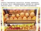 货架,水果店蔬菜店超市专用货架