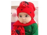 甲壳虫围巾帽子套装|瓢虫宝宝 儿童围巾帽毛线帽 只有红色2947