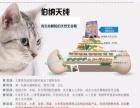 猫舍猫粮天然粮伯纳天纯幼猫无谷猫粮怀孕哺乳猫猫粮10KG