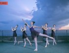 长沙雨花区哪里有学成人舞蹈的 单色舞蹈全国连锁免费试课