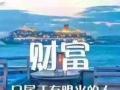 【北京速星创教育】加盟官网/加盟费用/项目详情