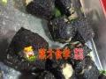 【长沙大香肠臭豆腐加盟】臭豆腐糖油粑粑浏阳蒸菜加盟