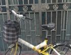 全新折叠自行车