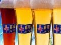 自酿啤酒 自酿啤酒加盟招商
