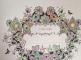 全新秘密花园韩国原版填色书 配12色彩铅