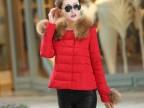 厂家直销 2014新款欧美时尚超大毛领短款时尚特价羽绒服批发