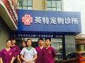 英特宠物诊所2017年春节正常营业