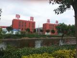 出售南通通州湾稀缺钢结构厂房