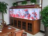 杭州出售锦鲤