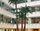北京仿真植物仿真花卉植物墙制作棕榈树椰子树制作厂家直销