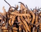 跃进村回收茅台酒大渡口五粮液回收高价回收虫草
