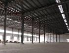 开平水口15000平米 超大空地 全新独院厂房出租