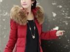 现货2012冬装新款奢华大毛领修身加厚 中长款女式羽绒服 批发